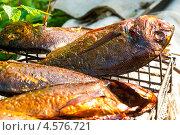 Купить «Рыба дорада, поджаренная на решётке», эксклюзивное фото № 4576721, снято 9 мая 2010 г. (c) Давид Мзареулян / Фотобанк Лори