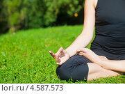 Купить «Девушка медитирует на зеленом лугу», фото № 4587573, снято 24 августа 2012 г. (c) Анна Лурье / Фотобанк Лори