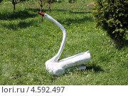 Купить «Лебедь, вырезанный из дерева», эксклюзивное фото № 4592497, снято 4 мая 2013 г. (c) Шуньята Антонова / Фотобанк Лори