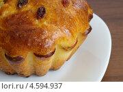 Купить «Кекс домашний с изюмом на тарелке», эксклюзивное фото № 4594937, снято 6 мая 2013 г. (c) Елена Коромыслова / Фотобанк Лори