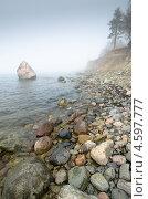 Купить «Эстонский берег в тумане», фото № 4597777, снято 28 апреля 2013 г. (c) Игорь Соколов / Фотобанк Лори