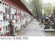 Купить «Москва, Новодевичье кладбище», эксклюзивное фото № 4606193, снято 6 мая 2013 г. (c) Дмитрий Неумоин / Фотобанк Лори