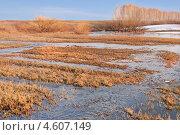 Купить «Бегут ручьи.Апрель», фото № 4607149, снято 20 апреля 2013 г. (c) Alexandra Ustinskaya / Фотобанк Лори