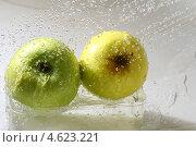 Купить «Яблоки под каплями воды», фото № 4623221, снято 31 июля 2008 г. (c) Иван Михайлов / Фотобанк Лори