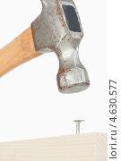 Купить «Крупно молоток и гвоздь в доске», фото № 4630577, снято 9 июня 2011 г. (c) Wavebreak Media / Фотобанк Лори