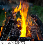 Купить «Костер с горящими поленьями», фото № 4639773, снято 10 мая 2013 г. (c) Дарья Филин / Фотобанк Лори