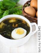 Купить «Суп из крапивы с яйцом», фото № 4639945, снято 18 марта 2013 г. (c) Darkbird77 / Фотобанк Лори