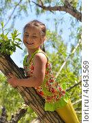 Весёлая девочка на дереве. Стоковое фото, фотограф Иванова Ирина / Фотобанк Лори