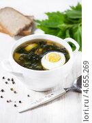 Купить «Суп из крапивы с яйцом», фото № 4655269, снято 18 марта 2013 г. (c) Darkbird77 / Фотобанк Лори
