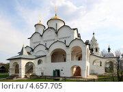 Купить «Суздаль, Покровский женский монастырь», эксклюзивное фото № 4657705, снято 10 мая 2013 г. (c) Дмитрий Неумоин / Фотобанк Лори