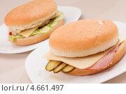 Два сандвича. Стоковое фото, фотограф Максим Шебеко / Фотобанк Лори