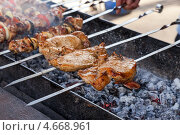Купить «Мясо на шампурах жарится на мангале», фото № 4668961, снято 16 февраля 2019 г. (c) FotograFF / Фотобанк Лори
