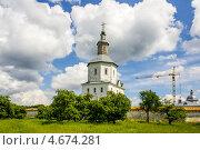 Купить «Свято-Успенский Свенский мужской монастырь», фото № 4674281, снято 29 мая 2013 г. (c) Руслан Митин / Фотобанк Лори