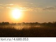 Купить «Яркое утреннее солнце над туманным озером», фото № 4680053, снято 25 мая 2013 г. (c) Сергей Костарев / Фотобанк Лори