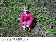 Девочка с корзинкой шишек в лесу. Стоковое фото, фотограф Eлена Кисель / Фотобанк Лори
