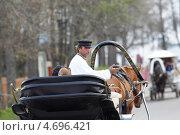 Купить «Суздаль, извозчик на улице города», эксклюзивное фото № 4696421, снято 10 мая 2013 г. (c) Дмитрий Неумоин / Фотобанк Лори