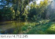 Пейзаж с деревьями и рекой. Стоковое фото, фотограф Павел Ходыревский / Фотобанк Лори