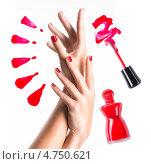 Купить «Красивые женские руки с красным маникюром», фото № 4750621, снято 29 мая 2013 г. (c) Валуа Виталий / Фотобанк Лори