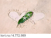 Купить «Два сердца и морские звезды на песке. Валентинка», фото № 4772989, снято 14 декабря 2012 г. (c) Татьяна Белова / Фотобанк Лори