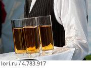 Купить «Официант с подносом в руке», фото № 4783917, снято 24 мая 2012 г. (c) Glen_Cook / Фотобанк Лори