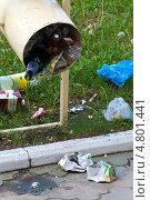 Купить «Рассыпанный возле урны мусор», эксклюзивное фото № 4801441, снято 25 мая 2013 г. (c) Вячеслав Палес / Фотобанк Лори