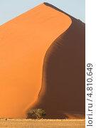 Купить «Вертикальный вид на песчаную дюну в национальном парке Намиб-Науклуфт, Намибия, Южная Африка», фото № 4810649, снято 19 июня 2013 г. (c) Николай Винокуров / Фотобанк Лори