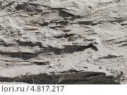 Купить «Плотная песчаная порода», эксклюзивное фото № 4817217, снято 15 июня 2013 г. (c) Наташа Антонова / Фотобанк Лори