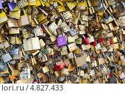 Купить «Замки влюбленных на мосту в Париже. Франция», фото № 4827433, снято 24 июня 2013 г. (c) Екатерина Овсянникова / Фотобанк Лори