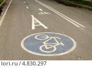 Велосипедная дорожка в Парке Горького в Москве (2013 год). Стоковое фото, фотограф Марат Сабиров / Фотобанк Лори