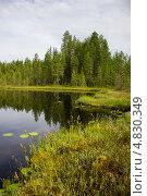 Купить «Летний пейзаж с озером в северной Карелии», эксклюзивное фото № 4830349, снято 6 июля 2013 г. (c) Наталья Осипова / Фотобанк Лори