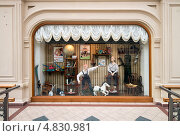 Купить «ГУМ. Витрина в советстком стиле», фото № 4830981, снято 4 апреля 2013 г. (c) Геннадий Соловьев / Фотобанк Лори