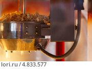Купить «Аппарат для приготовления попкорна», фото № 4833577, снято 15 июня 2013 г. (c) Данил Руденко / Фотобанк Лори