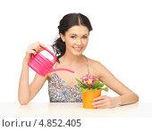 Купить «Красивая домохозяйка с темными волосами сидит за столом с комнатными растениями», фото № 4852405, снято 2 марта 2013 г. (c) Syda Productions / Фотобанк Лори