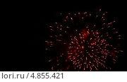 Купить «Фейерверк», видеоролик № 4855421, снято 3 июля 2013 г. (c) Игорь Жоров / Фотобанк Лори