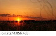 Купить «Закат в ковыле», фото № 4856433, снято 30 мая 2013 г. (c) Иван Федоренко / Фотобанк Лори