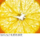 Разрезанный апельсин. Стоковое фото, фотограф Багова Маргарита / Фотобанк Лори