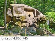 Купить «Волконский дольмен недалеко от  города Сочи», эксклюзивное фото № 4860745, снято 28 июня 2013 г. (c) Андрей Ижаковский / Фотобанк Лори