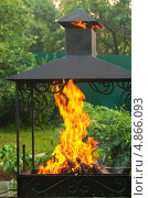 Купить «Огонь в мангале на фоне зелени», фото № 4866093, снято 24 июня 2013 г. (c) Зобков Георгий / Фотобанк Лори