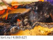 Костер. Стоковое фото, фотограф Патрушичев Дмитрий / Фотобанк Лори