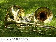 Духовые инструменты на зеленой траве. Стоковое фото, фотограф Юрий Москаленко / Фотобанк Лори