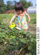 Купить «Маленькая дачница», фото № 4884301, снято 18 июля 2013 г. (c) Бондаренко Олеся / Фотобанк Лори