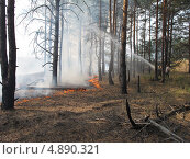 Пожар в лесу (2010 год). Редакционное фото, фотограф Геннадий чупругин / Фотобанк Лори