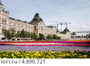 Купить «ГУМ на фоне цветочного ковра на Красной площади», фото № 4890721, снято 18 июля 2013 г. (c) Андрей Ерофеев / Фотобанк Лори