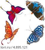 Экзотические бабочки. Стоковая иллюстрация, иллюстратор Александр Лукьянов / Фотобанк Лори
