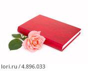 Купить «Красная книга и розовая роза на белом фоне», фото № 4896033, снято 21 июля 2013 г. (c) Елена Силкова / Фотобанк Лори