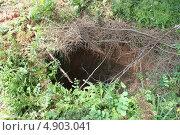 Ловчая яма. Стоковое фото, фотограф Юрий Попков / Фотобанк Лори