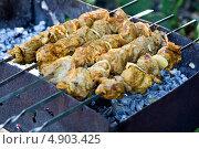 Шашлык. Мясо на шампурах. Стоковое фото, фотограф Юлия Киктенко / Фотобанк Лори