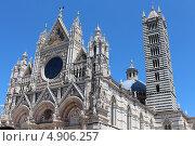 Купить «Сиенский Кафедральный Собор, Италия (Duomo di Siena)», фото № 4906257, снято 12 июня 2013 г. (c) Татьяна Крамаревская / Фотобанк Лори