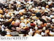 Морской берег, цветная галька, фон. Стоковое фото, фотограф Ольга / Фотобанк Лори