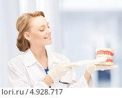 Купить «Молодой стоматолог показывает, как чистить зубы», фото № 4928717, снято 17 апреля 2011 г. (c) Syda Productions / Фотобанк Лори